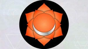 The chakras: Navel chakra (second chakrasana.)