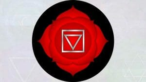 The chakras: Root Chakra (first chakrasana.)