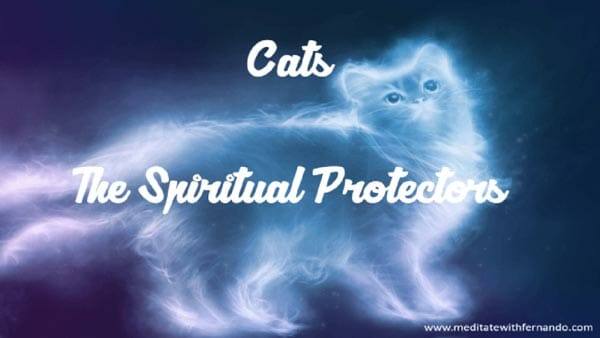 Our cats are spiritual protectors.