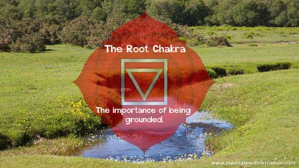 The root chakra keeps us grounded.