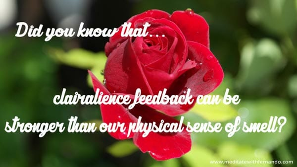 Clairalience and clairgustance provide awesome feedback.