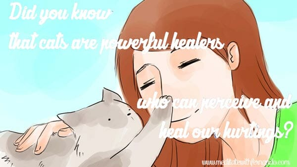 Cats are powerful healers.