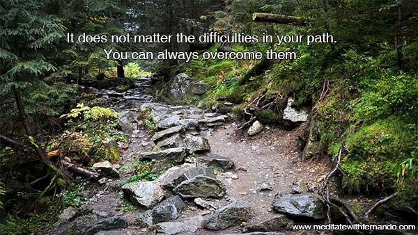 Understand your difficulties in life better and you will see that there is much more light than you thought.