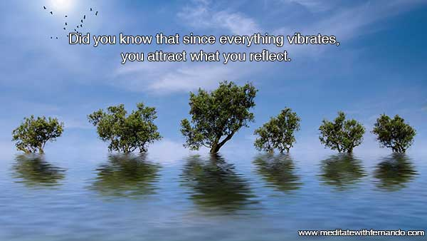 Principle of Vibration attracts what you reflect.