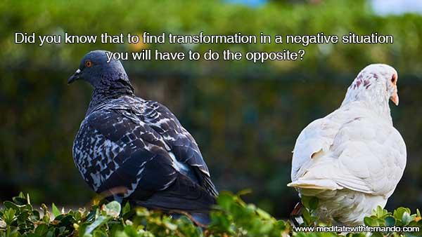 The principle of Polarity: Do the opposite to transform.