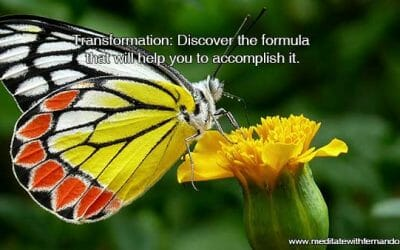 Transformation: Discover the formula that will help you to accomplish it.