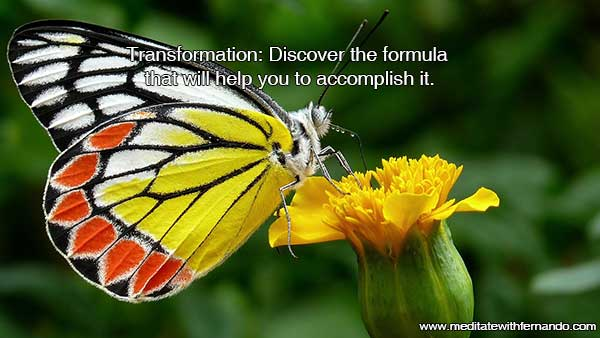 It is time for transformation. Learn how.