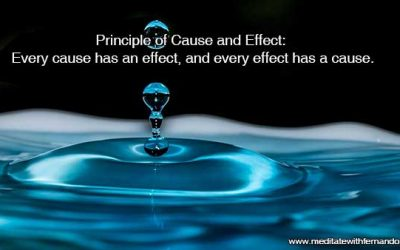 Principle of Cause and Effect: Every cause has an effect, and every effect has a cause.